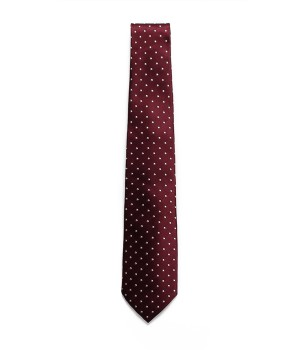 SMALL DOTS NECKTIE