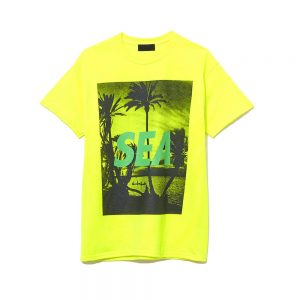 T-SHIRTS PALM TREE PHOTO