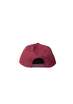 6 PANEL CAP ( TYPE-1)
